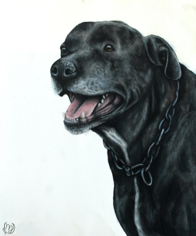 Odie's Memorial Portrait