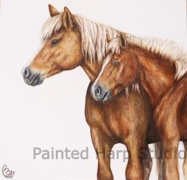 Haflinger Ponies